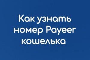 Как узнать номер Payeer кошелька