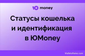 Статусы Yoomoney ru и идентификация кошелька